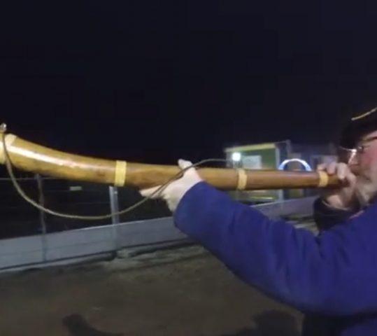 Moorbloazers aanwezig bij opening grootste schaapskooi van Nederland